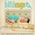 BIRD DESIGN LOGO image e1330270918709 FABULOUS VENDORS