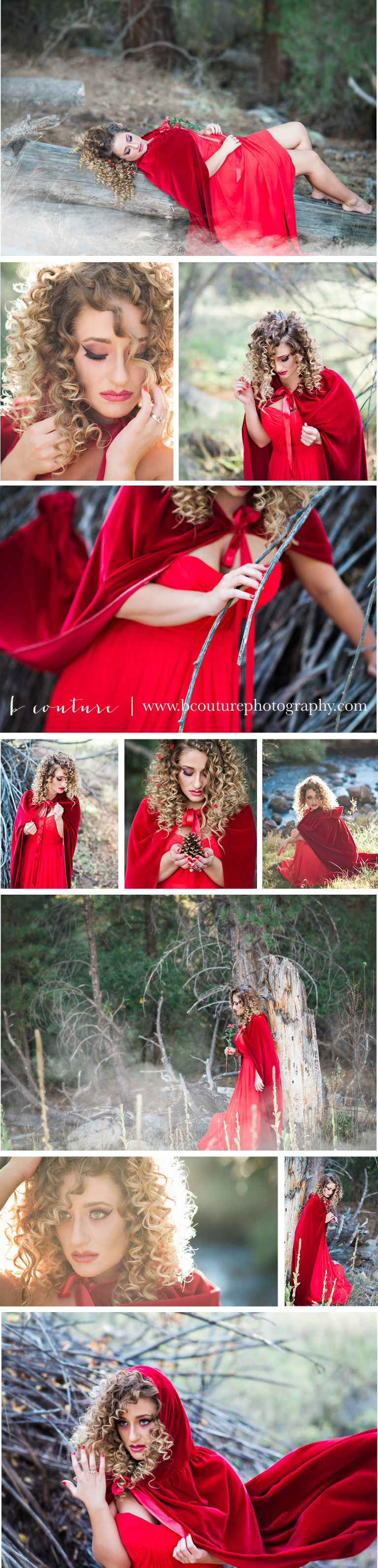 RED RIDING HOOD BLOG BOARD-2